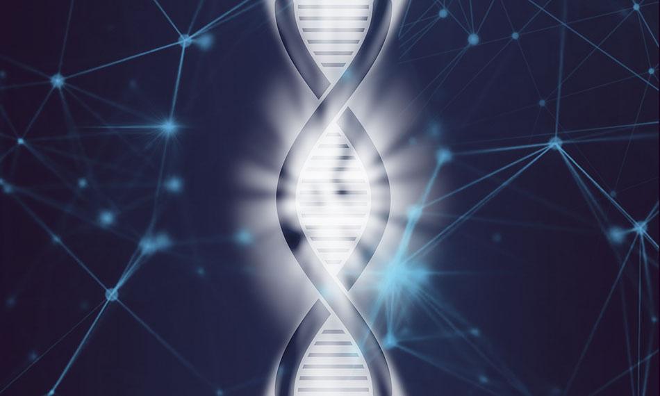 캐나다 생리학 생화학 유전학 생물의학 박사과정