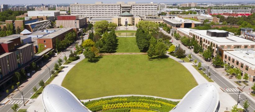 욕 대학교