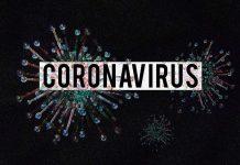 코로나바이러스