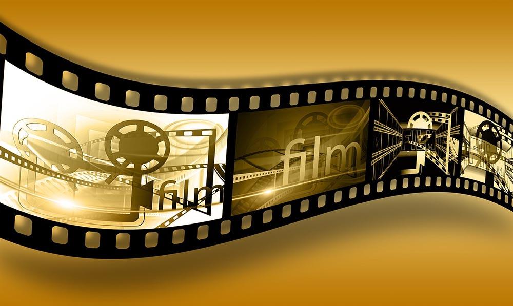 미국대학 편입 컨설팅 후기 영화제작 Film Production